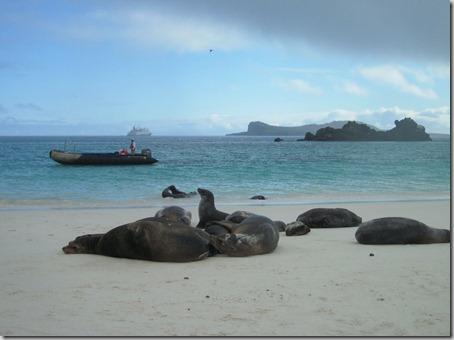 2012-12-17 Galapagos Day 1 morning water camera 007