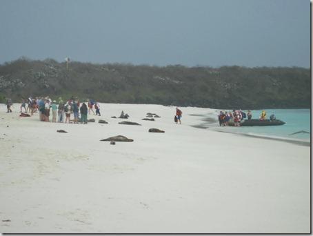 2012-12-17 Galapagos Day 1 morning water camera 030