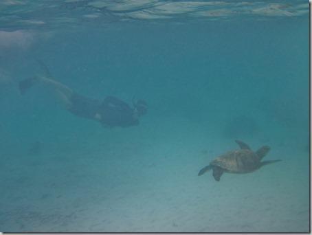 2012-12-17 Galapagos Day 1 morning water camera 076